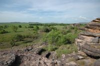 Kakadu, Nothern Territories