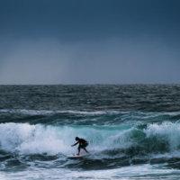 Hardy Surfer
