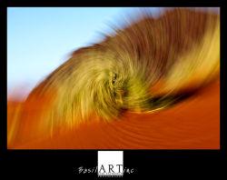 Grass whirl