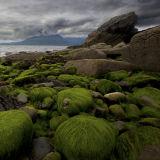 Elgol Green