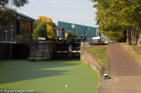 Algae below the lock