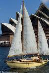 Sailing Ship Sydney Harbour