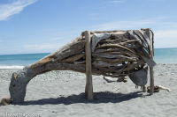 Driftwood cow at Hokitika beach