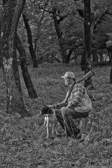 On a hunt V