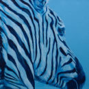 """Blue stripes"""