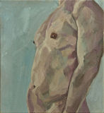 Study - male torso