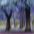 Group of Trees in Motion - blue