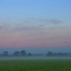 Misty Morning (3), Cheshire