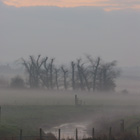 Misty Morning (2), Cheshire