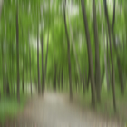Forrest in Motion, Moscow (green)
