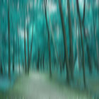 Forrest in Motion, Moscow (turquoise)