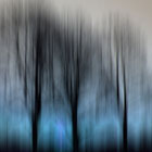 Three Trees in Motion - blue