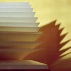 An open Book (3)