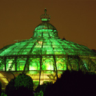 Royal Glasshouse, Brussels