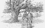Olbrige House Oak Tree
