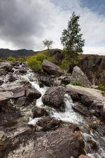 Mountain Stream, Snowdonia