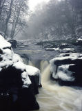 The Strid winter