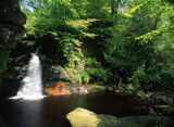 Waterfall Valley of Desolation