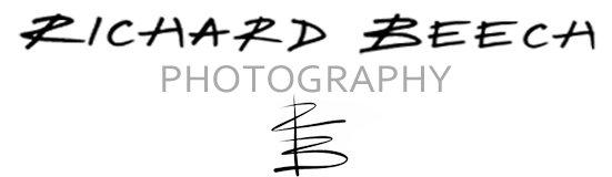 Richard Beech Photography
