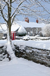 Edstone Winter