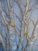Winter trees at Warriston 2