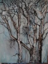 Silver birch 2