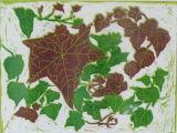 Ivy - linoprint