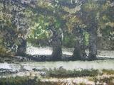 Endcliffe Park - aquatint