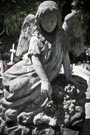Rakowice Cemetery Cracow