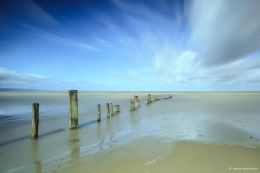 Berrow Sands